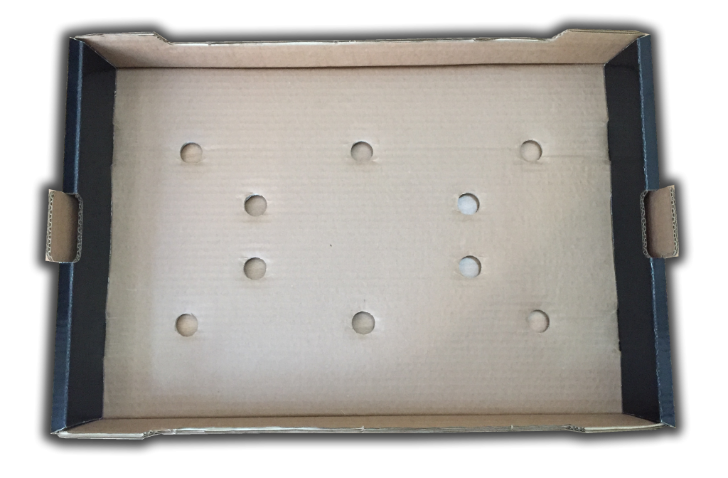 kiraz dış kutu