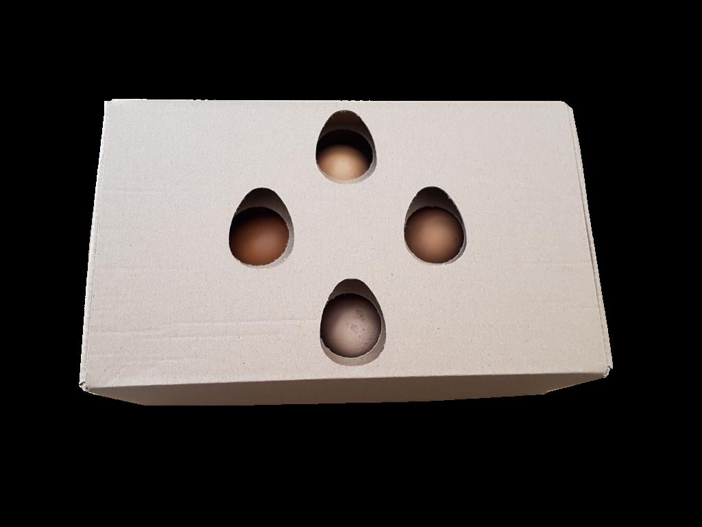 özel kesim yumurta kutusu