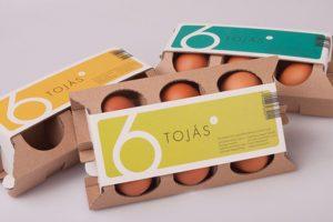 6lı yumurta kutuları