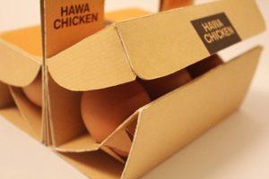 tutmalı yumurta kutusu
